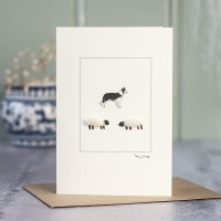 Sheep and collie card