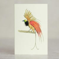 Mini Bird of Paradise card