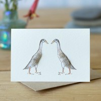 Mini Duck Indian Runners in conversation card