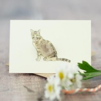 Cat Gift Card - sitting-tabby-cat