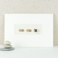 3 brown Guinea Pigs print