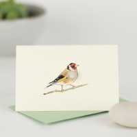 Mini Bird Goldfinch card