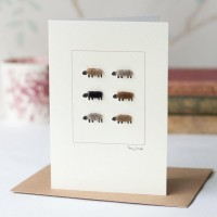 Sheep natural 6 card