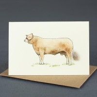 Cow Gift Card -  Simmental Cow
