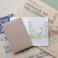 Chickens Gift Card - Hen in a flower border