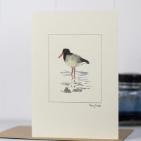 Oyster Catcher g Card