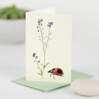 Mini Ladybird and forget me nots card