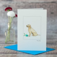 Italian Spinone and toy card
