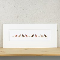 F16B10 - Long Row of Game Birds print