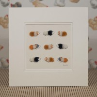 Guinea pigs-ginger, black and white print