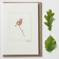 Whinchat on a branch card