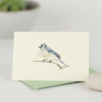 Mini Bird Bluejay card