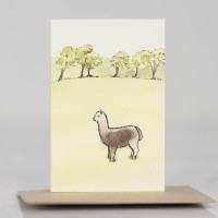 Mini Alpacas in field card