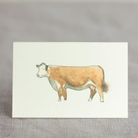 Cow Gift Card -  Hereford Cow