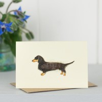 Mini Dog1 - Dachshund - Long haired black and Tan
