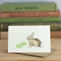 Mini Rabbit in grass card
