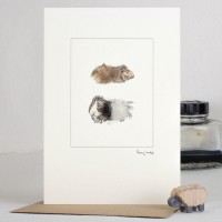 Guinea Pigs card brown and black