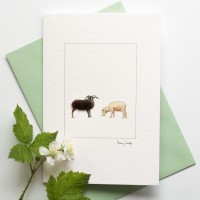Sheep Soay card