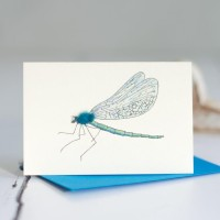 Mini Dragonfly card