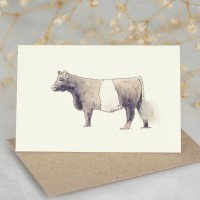 Cow Gift Card - Belted Galloway
